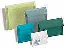 Translucent Envelopes Blank Holiday Invitations